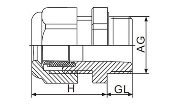 pg 19 cable gland